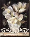 Magnolias of Nice