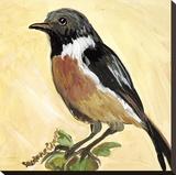 Bird VII