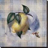 Tartan Fruit  Lemon