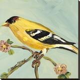 Bird Square I
