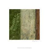 Earthen Textures II