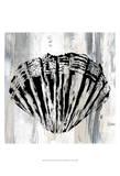 Black Shell II