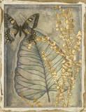 Leaf Fossil I