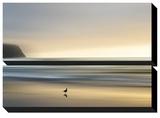 Visite matinale Tableau multi toiles par Marvin Pelkey