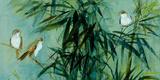 Bambu III