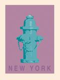 New York - Hydrant