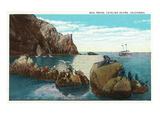 Santa Catalina Island  California - View of the Seal Rocks