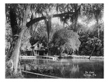Deleon Springs  Florida - Scenic View