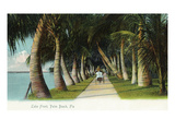 Palm Beach  Florida - Lake Front Scene