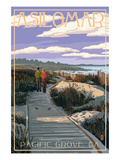 Pacific Grove  California - Asilomar Boardwalk