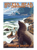 Heceta Head Lighthouse - Sea Lions