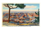 Grand Canyon Nat'l Park  Arizona - Yavapai Footpath View of Canyon