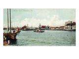 Pensacola  Florida - Harbor Scene