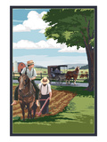 Amish Farmers and Buggy