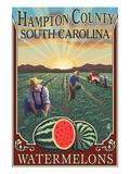 Hampton County  South Carolina - Watermelon Field