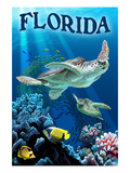 Florida - Sea Turtles