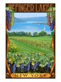 The Finger Lakes  New York - Vineyard Scene