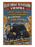 Blue Ridge Mountains  Virginia - Black Bear Family