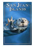 San Juan Islands  Washington - Sea Otter