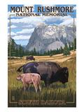 Mount Rushmore National Memorial  South Dakota - Bison Scene