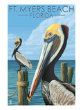 Ft Myers Beach  Florida - Pelicans