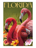Pink Flamingos - Florida