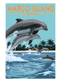Marco Island  Florida - Dolphins Jumping