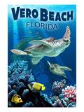 Sea Turtles - Vero Beach  Florida