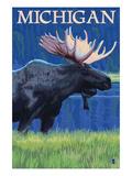Michigan - Moose at Night