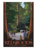 Redwoods State Park - Boardwalk
