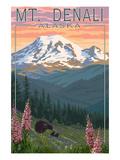 Bear and Cubs Spring Flowers - Mount Denali  Alaska