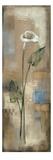 Spring Grace III Reproduction d'art par Silvia Vassileva