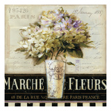 Marche de  Fleurs Reproduction d'art par Lisa Audit