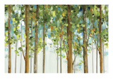 Forest Study I Crop Giclée premium par Lisa Audit