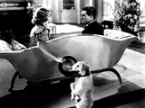 The Awful Truth  Irene Dunne  Asta  Cary Grant  1937