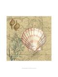 Coastal Map Collage I