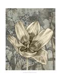 Tulip and Wildflowers VIII Reproduction d'art par Jennifer Goldberger