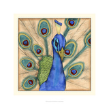 Eccentric Bird I