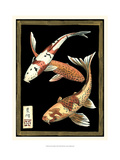 Koi Fish on Black I Reproduction d'art par Chariklia Zarris