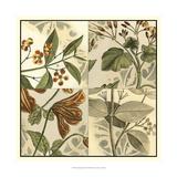 Botanical Quadrant II