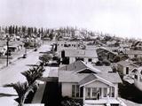 Forest of Derricks in the Signal Hill Oil Fields Near Long Beach  California  1933