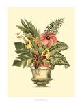 Tropical Elegance II