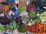 Selling Fruit in Local Market  Goa  India