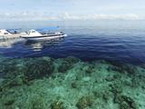 Diving Boat  Sipadan  Semporna Archipelago  Borneo  Malaysia
