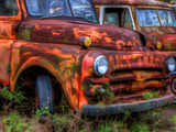 Rusty Trucks at Old Car City  Georgia  USA