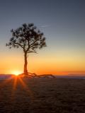 Sunrise at Bryce Canyon National Park  Utah  USA