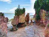 Lovers Arch and Bear Rock Sea Stacks  Hopewell Rocks Bay  Hopewell Cape  New Brunswick  Canada