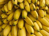 Bananas at the Saturday Market  San Ignacio  Belize