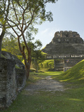 El Castillo Pyramid  Xunantunich Ancient Site  Cayo District  Belize