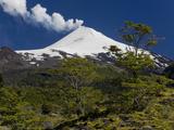Villarrica Volcano  Villarrica National Park  Chile